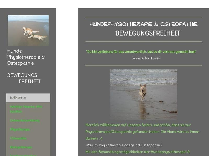 Screenshot von https://www.physiotherapie-bewegungsfreiheit.de/